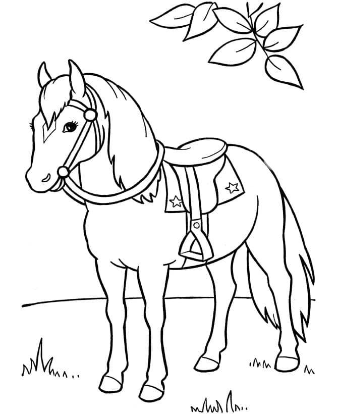 Omaľovánka - kôň - 2