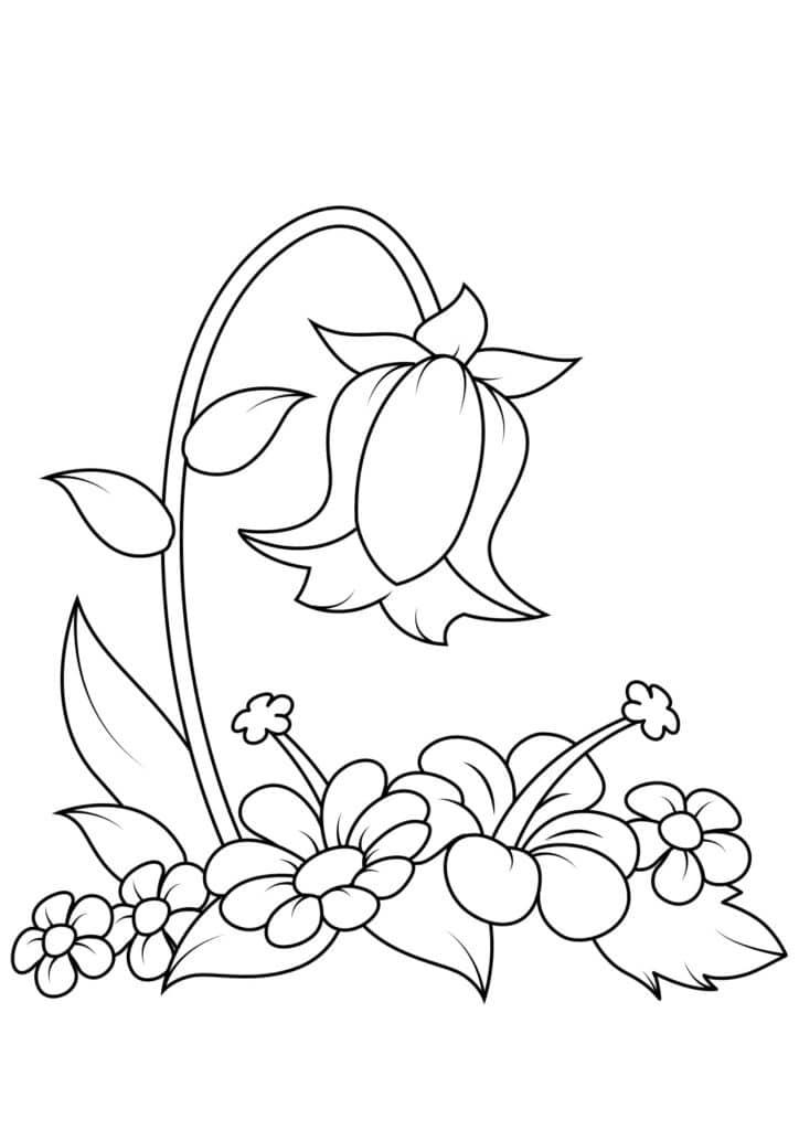 Omaľovánka - kvety - 19