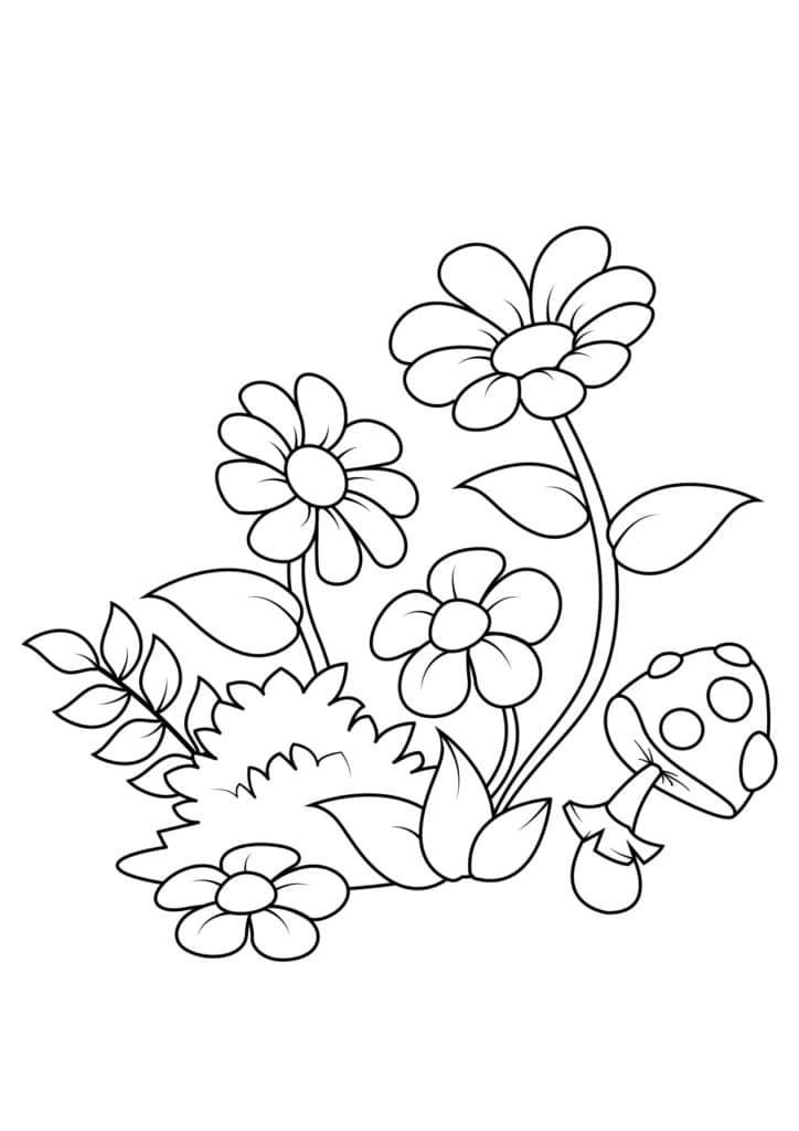 Omaľovánka - kvety - 3
