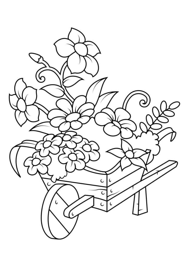 Omaľovánka - kvety - 4