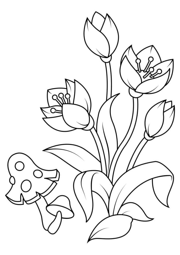Omaľovánka - kvety - 7