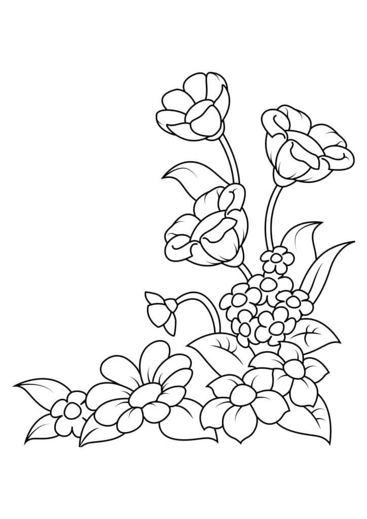 Omaľovánka - kvety - 9