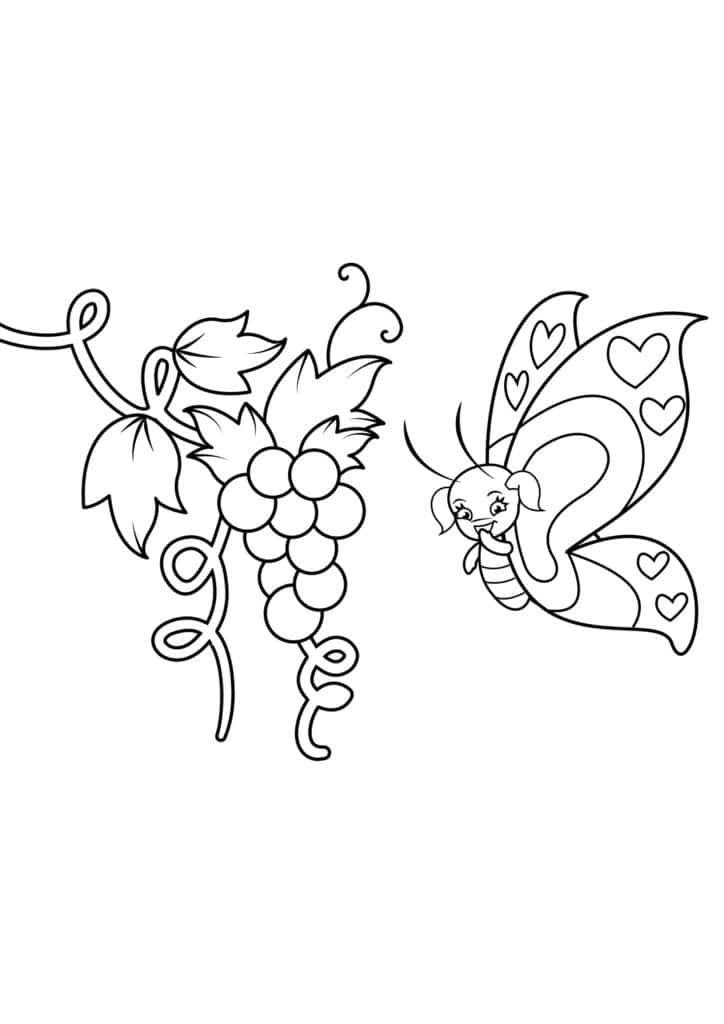 Omaľovánka - Motýľ - 8