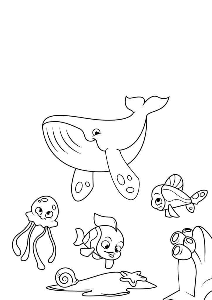 Omaľovánka - Ryby - 18