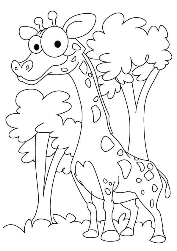 Omaľovánka - Žirafa - 2