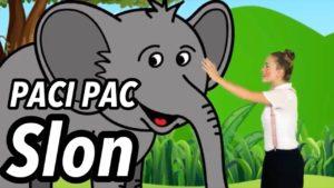 Paci Pac: Slon (pesnička)
