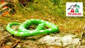 Spievankovo: Na hada (pesnička)