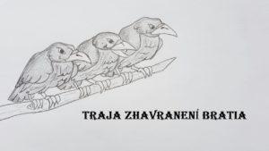 Traja zhavranení bratia (audio rozprávka)