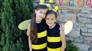 Víla Ella: Včielky (pesnička)